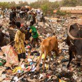 Waste Mountain