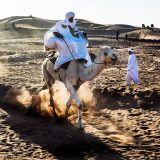Kicking up the dust - camel racing at the Taragalte Festival, M'Hamid El Ghizlane